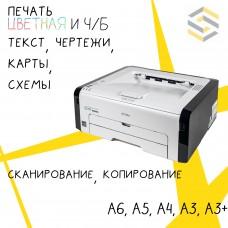 Заливка (фото) А3